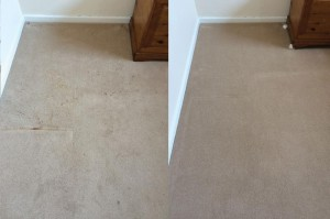 Coffee Stain Removal from Carpet- before and after